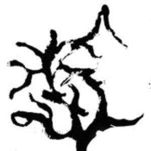Il nostro nuovo simbolo